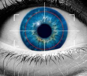 Politics of Cyber Surveillance